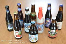 クリスマス限定の輸入ビールギフトセットを購入してみた