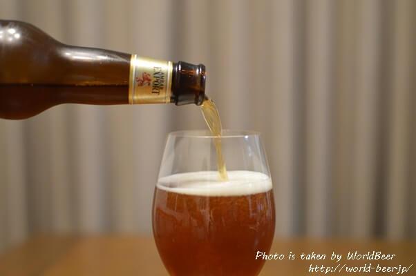 美味しいスペインビール、「アンバーエクスポート」いかがですか?